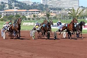 Ecurie Marseille : ecurie des ludels vencedor conclut 2e marseille bor ly ~ Gottalentnigeria.com Avis de Voitures