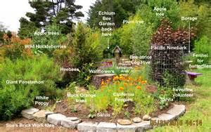 the bee garden birdhouse bees adventures in