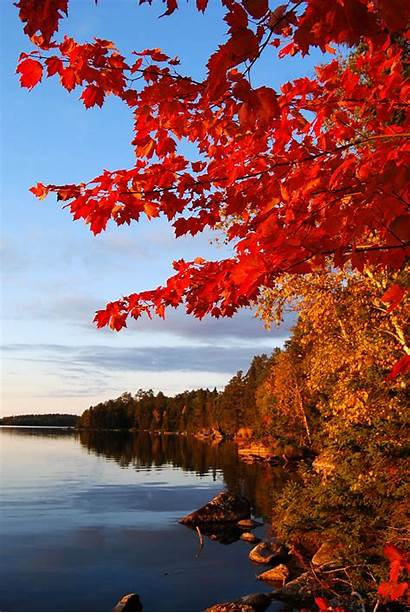 Fall Spring Minnesota Colors