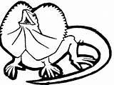Coloring Pages Lizard Gecko Printable Drawing Cartoon Getdrawings Clipartmag Getcolorings sketch template