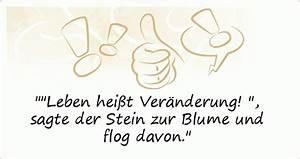Blume Und Leben : coole spr che einer von 52 spr chen ~ Articles-book.com Haus und Dekorationen
