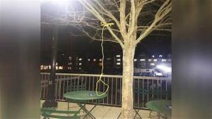 Duke University Investigating Noose Found Hanging on ...