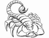 Scorpion Coloring Pages Drawing Prehistoric Cartoon Tail Scorpions Printable Template Luxury Getdrawings Simple Goodnight Dinosaur Say Sketch Paper Results Templates sketch template