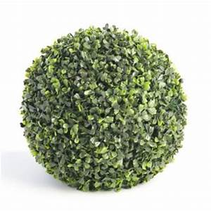 Boule De Buis : location boule de buis artificiel sur lyon ~ Melissatoandfro.com Idées de Décoration