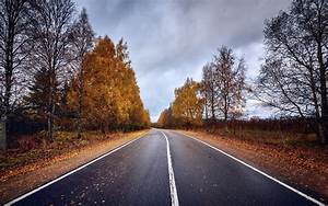 Road, Trees, Fall, Wallpapers, Hd, Desktop, And, Mobile, Backgrounds