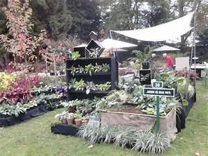 ruban d39or au domaine de chantilly jardin du beau pays With good jardin de rocaille photos 1 les jardins du gue grande rocaille