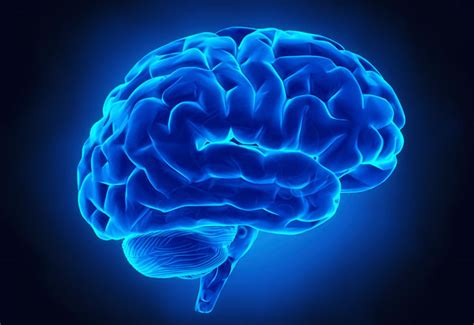 neurosurgical spine care suburban hospital bethesda md