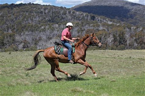 top  australian locations   horse riding holiday