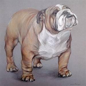 American Bulldog ART Pet Portrait Drawing by ...