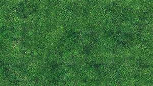 vg56-grass-texture-nature-pattern - Papers co