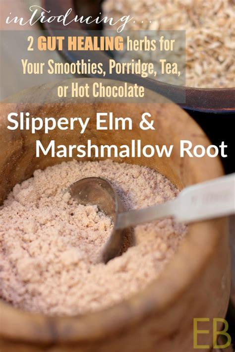 slippery elm  marshmallow root  gut healing