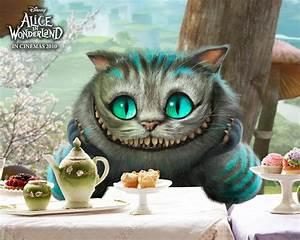Chat D Alice Au Pays Des Merveilles : fichier chat alice au pays des wiki mario fandom powered by wikia ~ Medecine-chirurgie-esthetiques.com Avis de Voitures