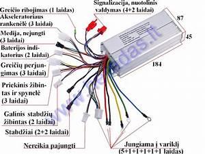 Citycoco Wiring Diagram