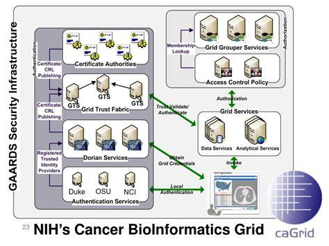 grouper access management ppt powerpoint presentation bioinformatics nih grid cancer