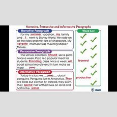 Cc7104 How To Write A Paragraph Narrative, Persuasive And Informative Paragraphs Mini Youtube