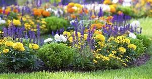 Blumenbeete Zum Nachpflanzen : inselbeet anlegen und gestalten mein sch ner garten ~ Yasmunasinghe.com Haus und Dekorationen