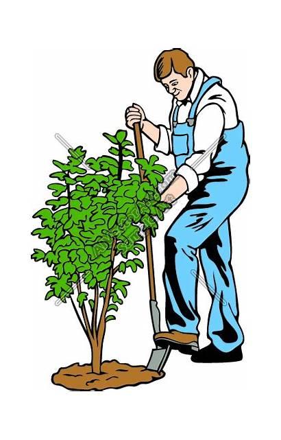 Clip Yard Clipart Worker Landscaping Working Gardeners