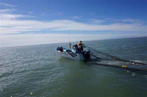Boats Net I by Alternative Fishing Gear Tests 2015 Shrimp Gulf Of