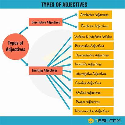 Adjectives Types Examples English Definition Grammar Sentence