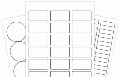 Label Template Templates Blank Word Microsoft Pdf