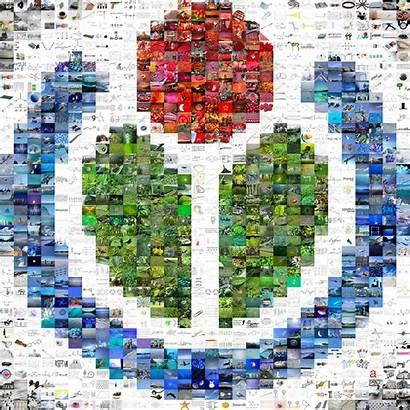 Wikimedia Commons Wikipedia Mosaic Europeana Wiki Working