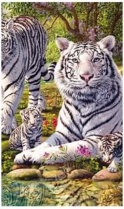 White Tiger Family Nature Jungle Stepfather Waterfall ...