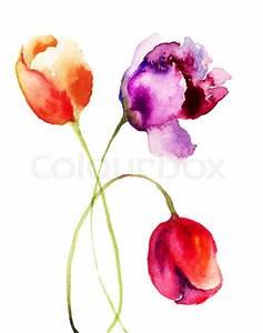 Beautiful Tulips flowers, Watercolor painting | Stock ...