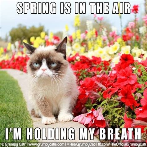 Spring Is In The Airim Holding My Breath From The