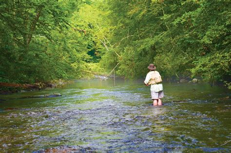 trout streams fishing carolina north freshwater western coastal magazine angler coastalanglermag