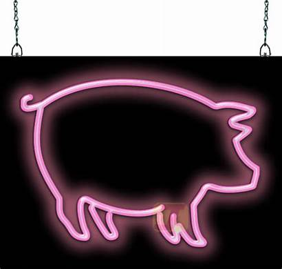 Neon Sign Signs Pig Fish Pets Jantecneon