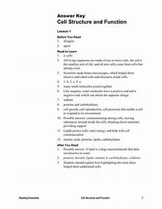 Cells The Units Of Life Worksheet Answers Chapter 2