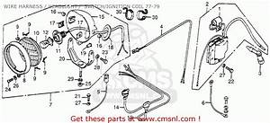 Honda Fl250 Odyssey 1978 Usa Wire Harness    Headlight