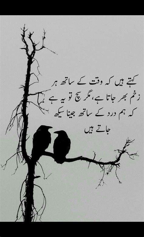 pin  maher falak  urdu quotes punjabi quotes urdu