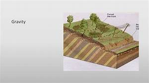 Lecture And Study Guide Rocks  Soils  Erosion  Weathering