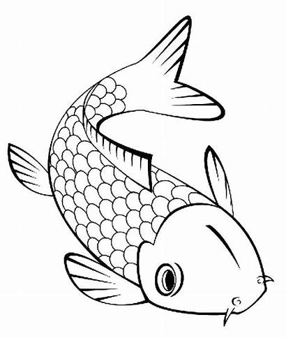 Realistic Fish Coloring Pages Tropical Printable Getcolorings