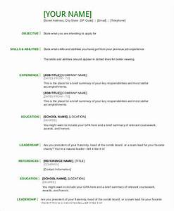 Resume in word template 24 free word pdf documents for Basic resume format pdf