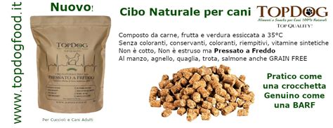 conservanti naturali per alimenti top alimenti e snack naturali per cani top i