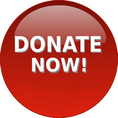 Donate Now The Willowdale Steeplechase