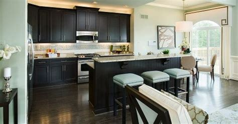 dark expresso cabinets  light teal walls  cabinets