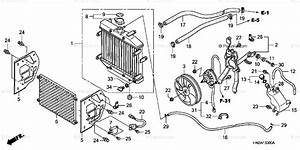 Honda Atv 2007 Oem Parts Diagram For Radiator