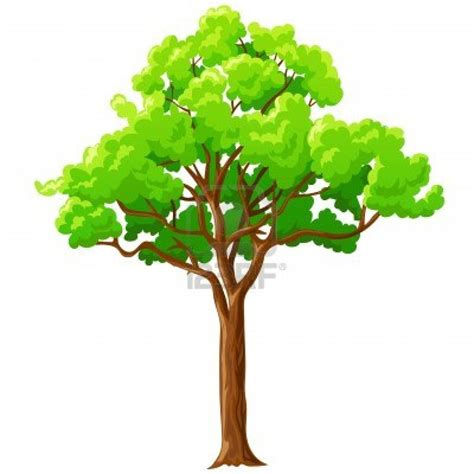 Animated Tree Wallpaper - tree wallpapers wallpapersin4k net