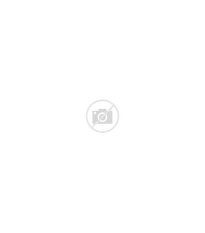 Human Symbol Relationship Association Solidarity Abstrakt Umano
