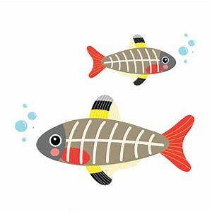 X Ray Fish Clipart - ClipArt Best