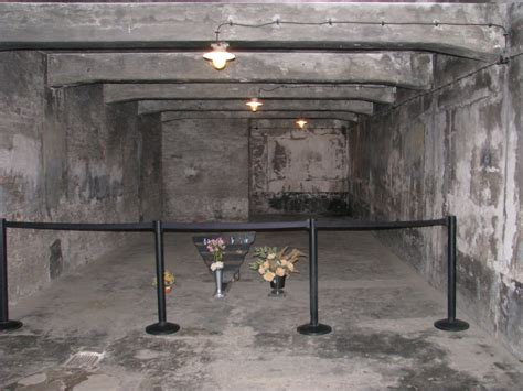 struthof chambre à gaz the gas chambers jan27 org committee