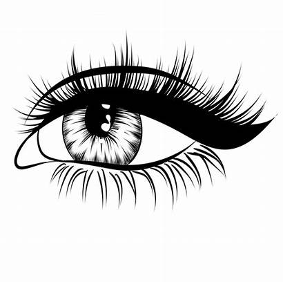Lashes Transparent Eye Eyes Drawing Clipart Eyebrows