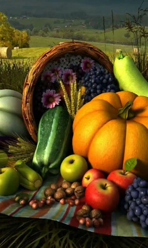 Android Free Thanksgiving Wallpaper by Thanksgiving Wallpaper For Android Festival Collections