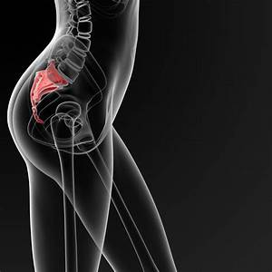 Can You Actually Break Your Tailbone — Or Only Bruise It ...  Coccyx