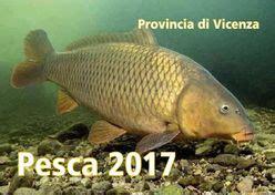 licenza di pesca nelle acque interne tipo b pesca provincia di vicenza