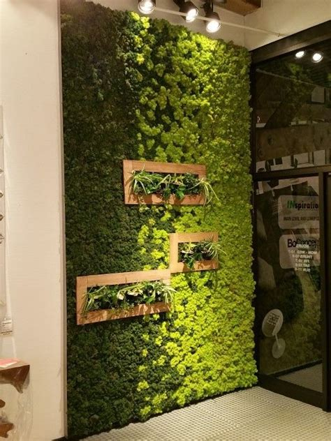 Ideas Green Walls by Moss Is New Paint How To Create With Moss Spaces