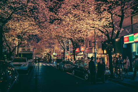 cinematic   tokyos streets magically lit   night